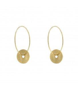 Goudkleurige kleine oorbellen met een munt